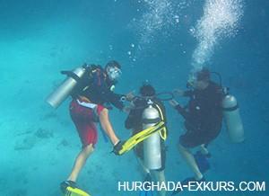 diving-kurs_4