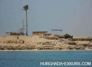 mahmeya_2
