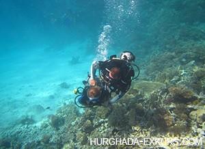 diving-ind_1