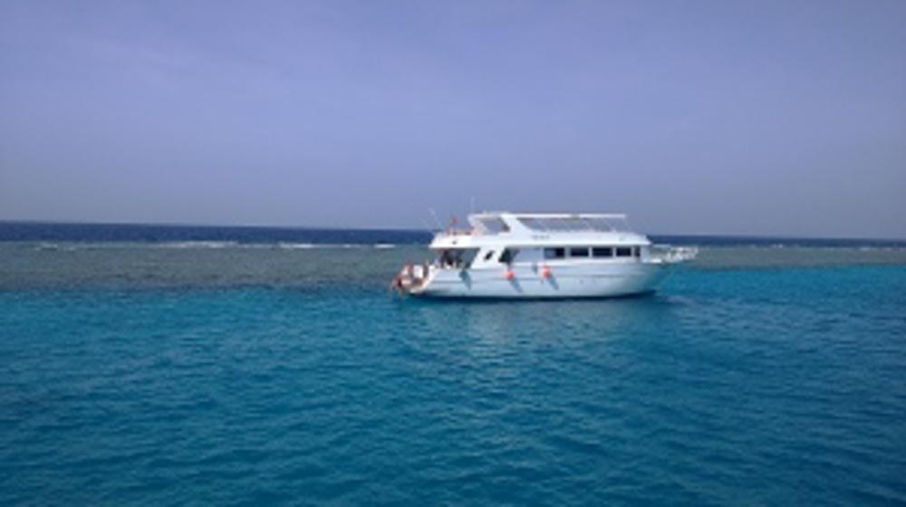 Райский остров Парадайс