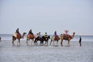 Романтическая морская прогулка в Сахл Хашиш (9 в 1)